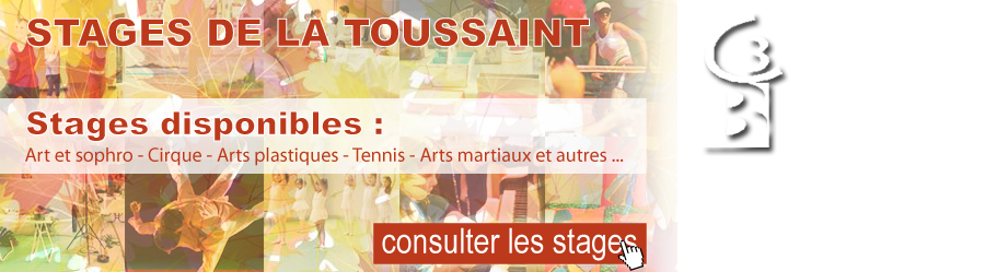 stages toussaint c3b